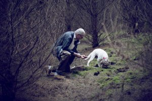A FUNGUS AMONG US   Tom, a Lagotto Romagnolo, hunting Oregon winter white truffles with his trainer, Jim Sanford Photography by Laura D'Art for WSJ. Magazine