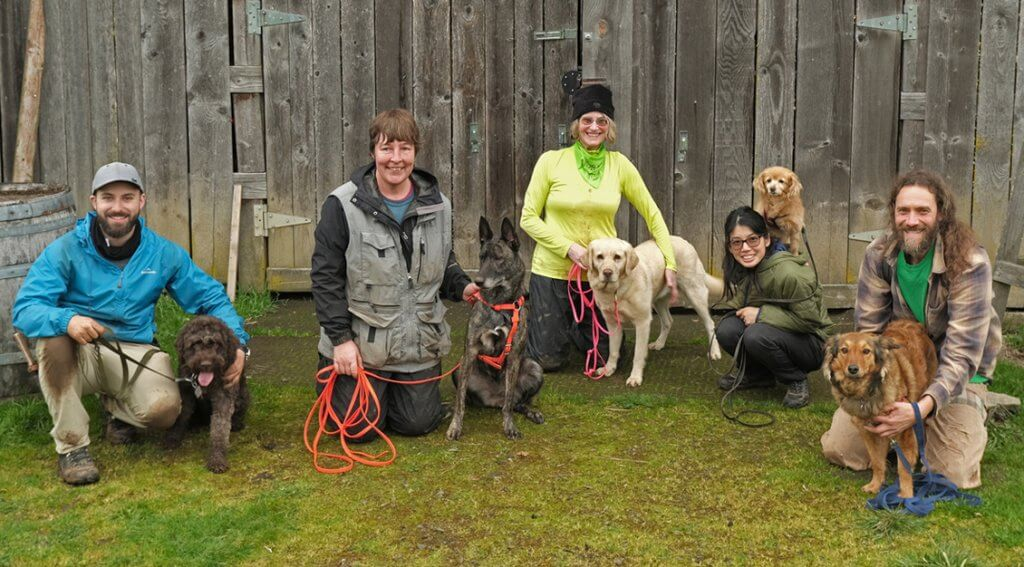 This year's Joriad finalists from left to right: Falco, a Lagotto Romagnolo and his owner Michael Chang; Vodka, Dutch Sheperd and her owner Jenny Thorp; Joey, a Field Labrador and her owner Ava Chapman; Flint, a Cocker Spaniel Mix and her owner Anita Yee; Cinnamon Rose, an English Sheperd and her owner James Taylor    – Photo by David Barajas