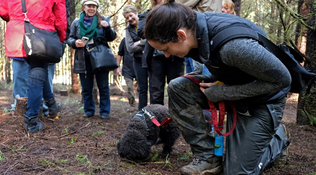 It is exciting for everyone when a truffle is found! – Photo by David Barajas